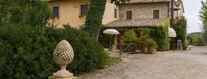 Agriturismo Podere La Fornace is one of Qui sono stato!.