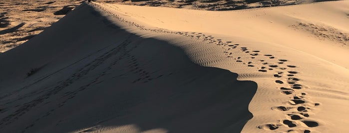 Kelso Sand Dunes is one of Locais curtidos por Karl.