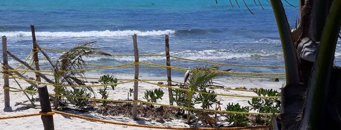 Punta Esmeralda is one of Molly 님이 좋아한 장소.