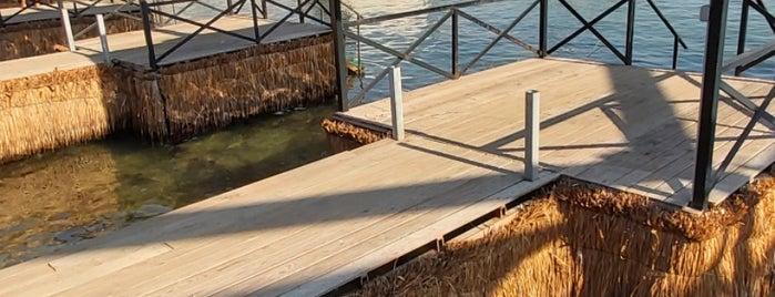 Tren Beach Club is one of Locais curtidos por Merve.