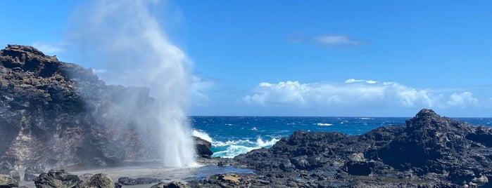 Nakalele Blowhole is one of Maui to-do.