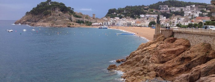 Platja Gran is one of Playas de España: Cataluña.
