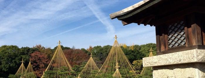 Shiratori Garden is one of + Nagoya.