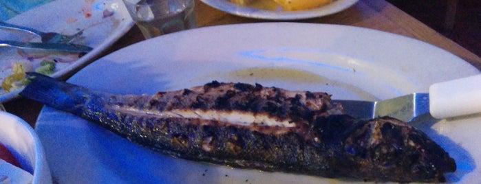 Taverna Kyclades is one of Locais curtidos por Aurora.