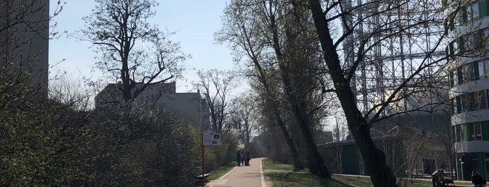 Cheruskerpark is one of Berlin.
