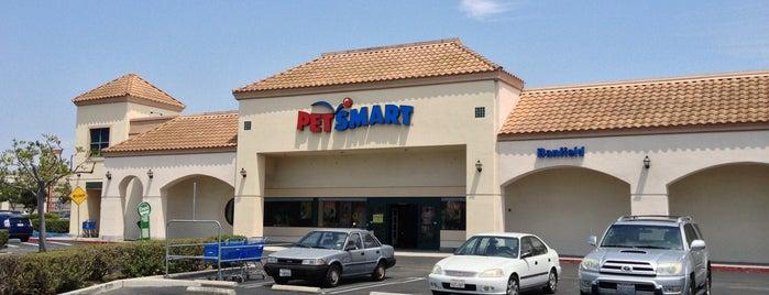 PetSmart is one of Locais curtidos por Brian.