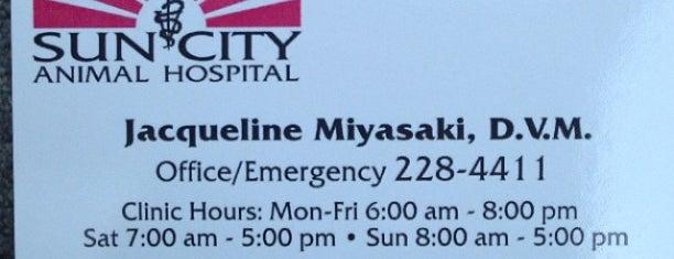 """Sun City Animal Hospital is one of Tempat yang Disukai Michael """"perkolate.com""""."""