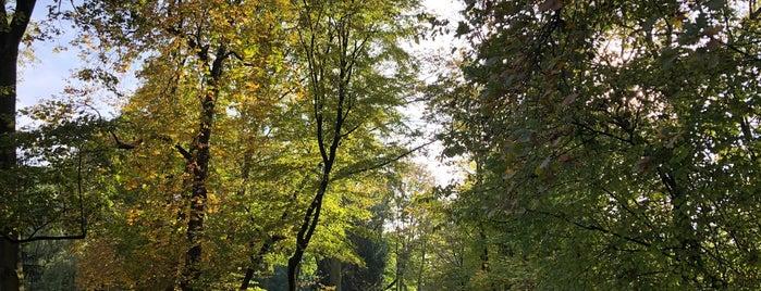 Solmspark is one of SMS FRANKFURT Group Travel 님이 좋아한 장소.