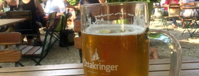 Bunkerei Augarten is one of Vienna's wheelchair accessible restaurants.