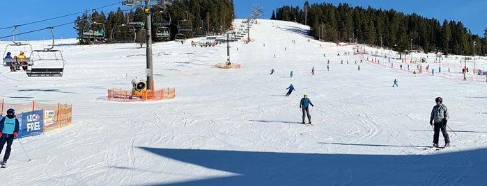 Koziniec Ski is one of Lieux qui ont plu à Tomek.