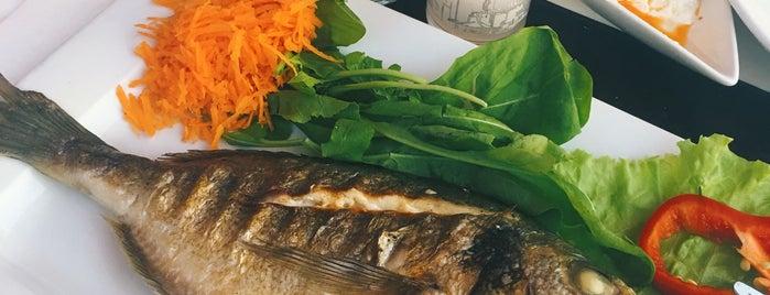 Minhan rakı & balık is one of ☺️.