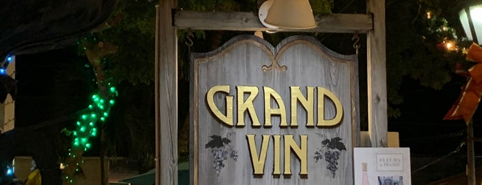 Grand Vin Wine Shop & Bar is one of Posti che sono piaciuti a Robert.
