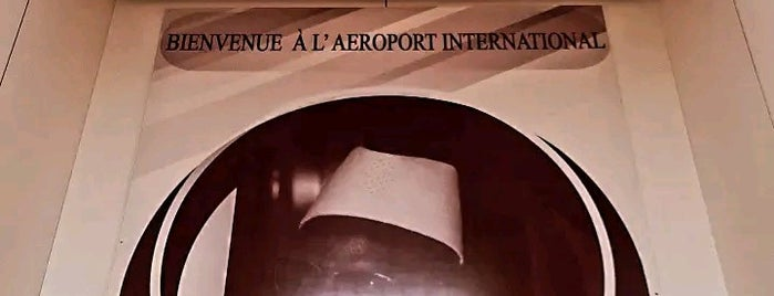 Diori Hamani International Airport (NIM) is one of my flight.