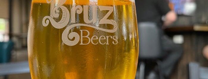 Bruz Beers is one of Locais curtidos por Aaron.