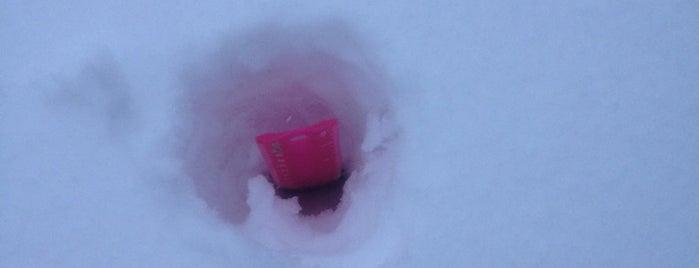 Snowpocalypse 2013 is one of สถานที่ที่ Robin ถูกใจ.