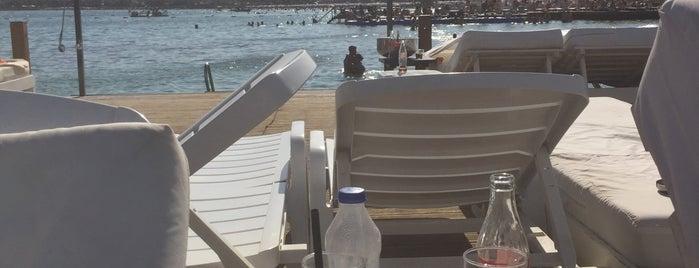 Tren Beach Club is one of Didim.