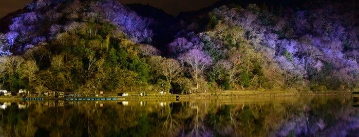 Arashiyama Park is one of KIX.