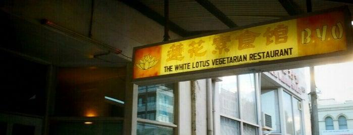 White Lotus is one of Locais salvos de Scott.