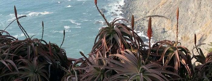 Big Sur Beach is one of Lugares favoritos de Latoya.