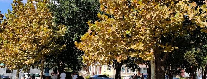 Joe Riley Waterfront Park is one of Charleston, SC.