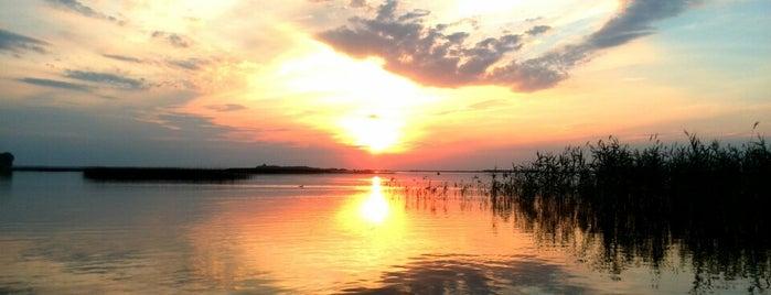 Озеро Світязь (Світязьке) is one of Posti che sono piaciuti a Valery.