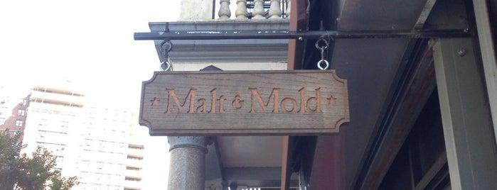Malt & Mold is one of NYC Good Beer Passport 2014.