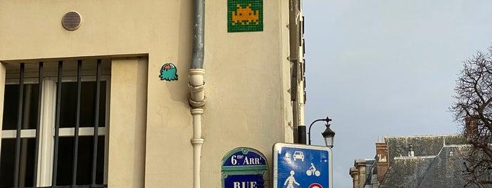 Rue Férou is one of Paris atypique.