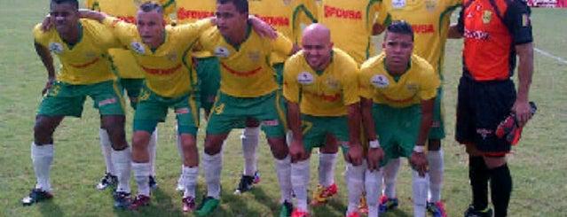 """Estadio Ramón """"Gato"""" Hernández is one of Estadios Primera División de Venezuela."""
