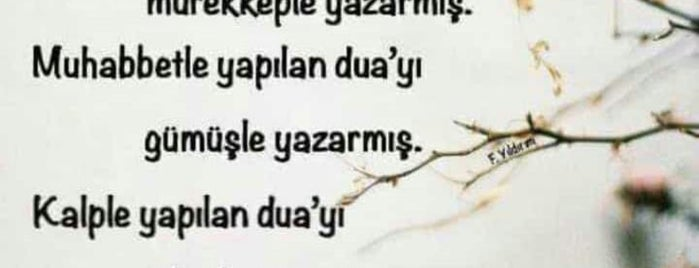 Vatan Sanayi Camii is one of Konya Karatay Mescit ve Camileri.
