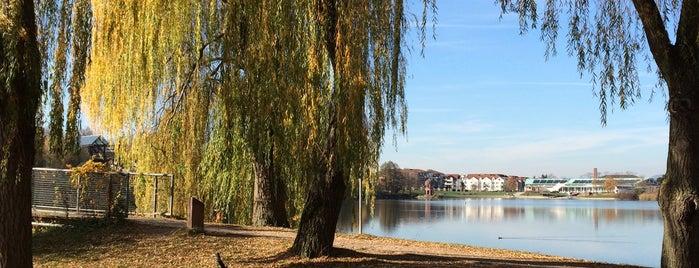 Seepark is one of Lyon.