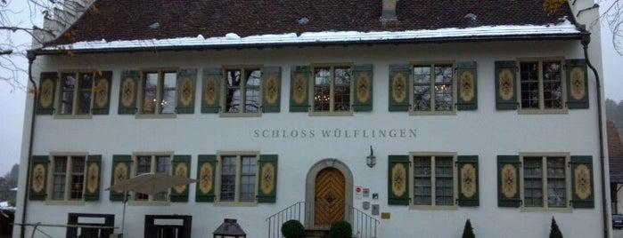 Schloss Wülflingen is one of Suíça.