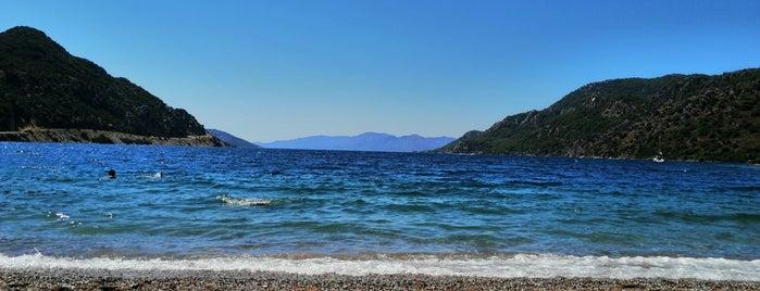 Delikyol Plajı is one of K.