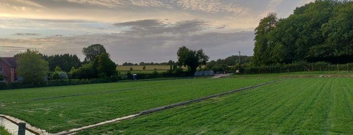 Headbourne Worthy is one of BTCC Thruxton.