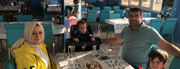 Başkanın Yeri Balık Restaurant is one of Orte, die Ekrem gefallen.