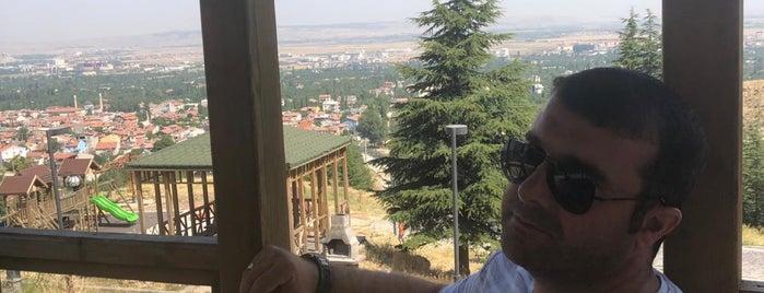 Erkmen Tepe Piknik Alanı is one of Posti che sono piaciuti a 🇹🇷.