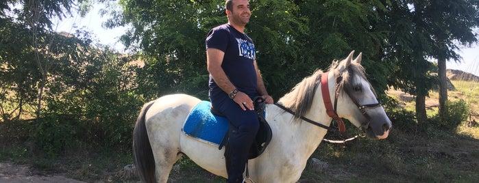 Kaya Malikanesi 🏰 is one of Ekrem'in Beğendiği Mekanlar.