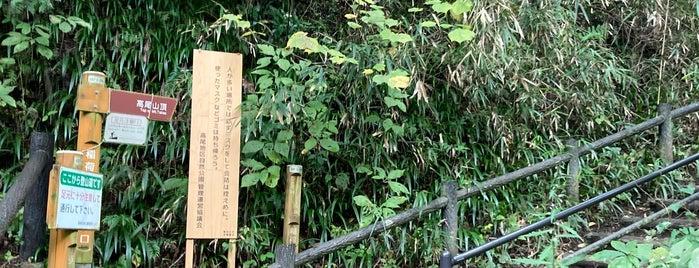 Inariyama Trail is one of 東京ココに行く! Vol.43.