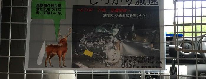 日産レンタカー 釧路空港店 is one of Tempat yang Disukai 高井.