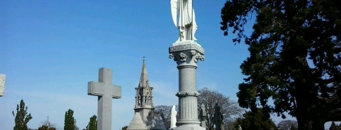Glasnevin Cemetery is one of Locais curtidos por Zia.