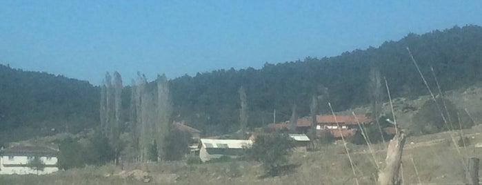 Çamdibi is one of Kütahya | Aslanapa İlçesi Köyleri.