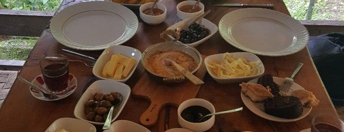 Sini Yöresel Kahvaltı ve Yemek is one of Gidilebilcek.