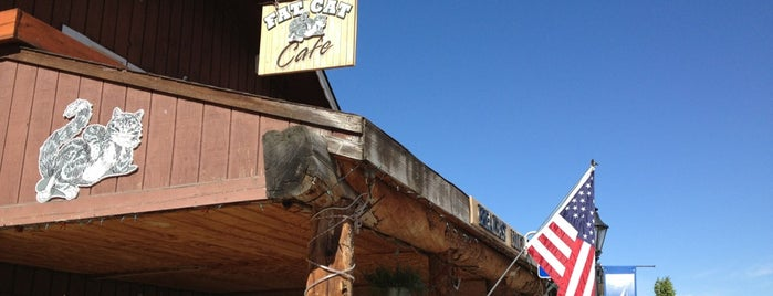 Fat Cat Cafe is one of Lugares favoritos de Shelton.