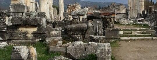 Aphrodisias Antik Kenti is one of * ECOTOURISM GUIDE *.