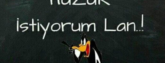 Altıparmak is one of Atacaksin.