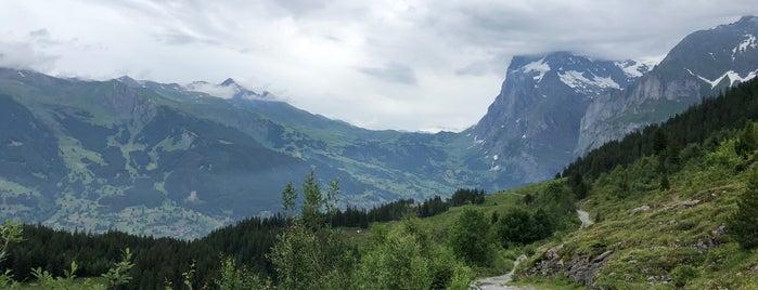 Alpiglen to Kleine Scheidegg Trail is one of Kristina 님이 좋아한 장소.