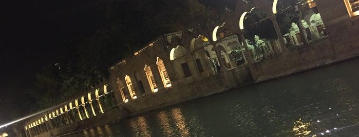 Balıklıgöl Dergah is one of สถานที่ที่ Bora ถูกใจ.