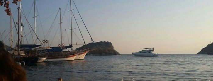 Okyanus Balık Gümüşlük is one of Lugares favoritos de hande.