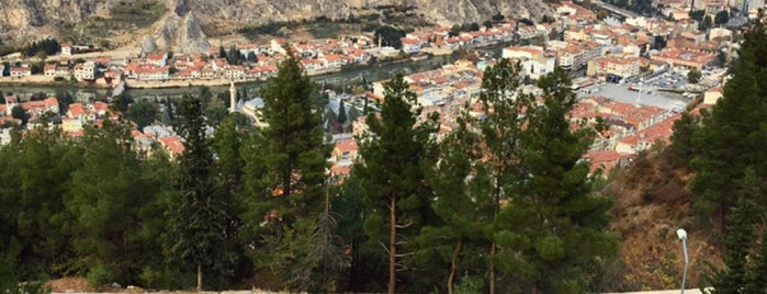 Amasya Yamac Bistro is one of Locais curtidos por 🐍.