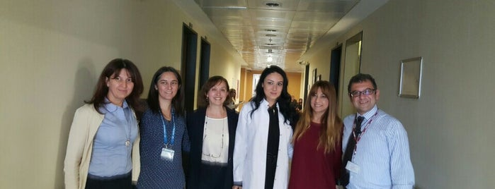 Marmara Üniversitesi Tıp Fakültesi Pediatri Servisi is one of Hospitals.