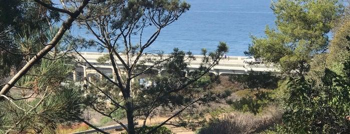 Torrey Pines Cliffs is one of San Diego Trip.